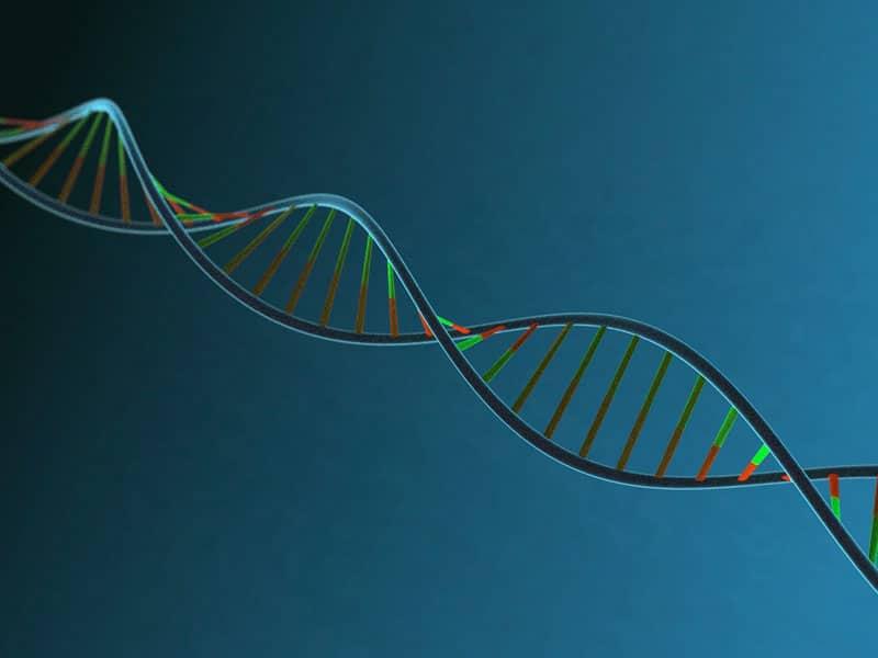 NIPT - DNA